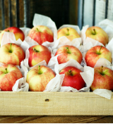 GOLDEN DELICIOUS AND FUJI APPLE SALE