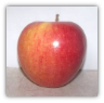 12 WASHINGTON PINATA APPLES GIFT BOX-- TWO DAY SHIPPING INCLUDED