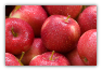7 POUNDS WASHINGTON SWEET TANGO APPLES --TWO DAY SHIPPING INCLUDED IN PRICE