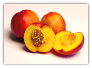 12  FRESH NECTARINES Price includes shipping-