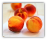 15 Pacific Northwest Peaches--price includes shipping