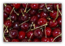 12 POUNDS CHERRIES price includes two day shipping